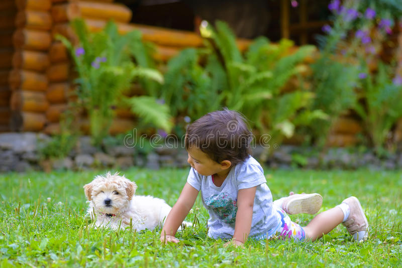Little girl playing with a little puppy on grass. Little girl playing with a little puppy royalty free stock image