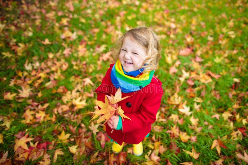 Little girl playing with maple leaf in autumn stock images