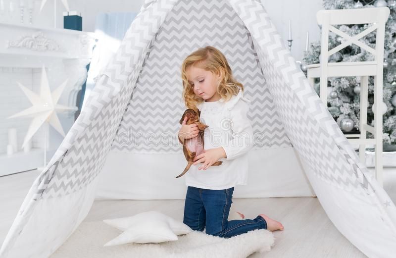 The little girl is playing with small puppy dog near the wigwam in christmas playroom stock photo