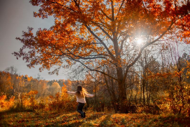 Little girl playing under red oak royalty free stock photos
