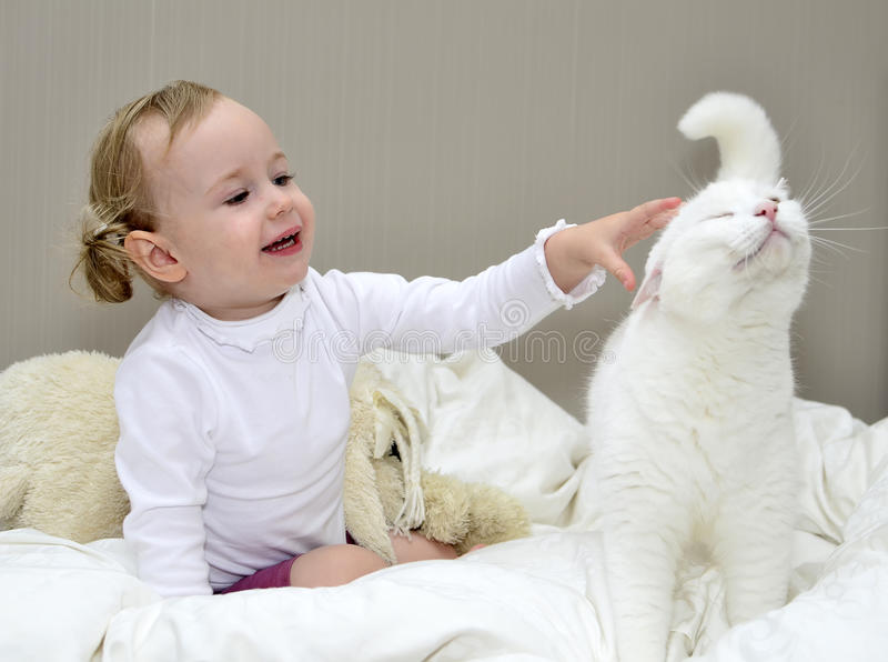 Little girl plays with a cat. Little girl sitting on the bed and plays with a cat royalty free stock image