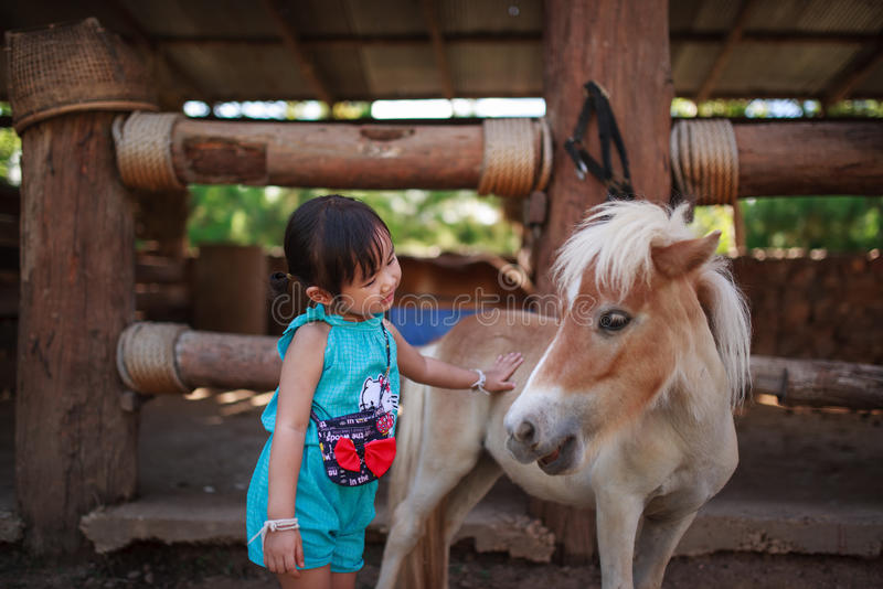 Little girl with pony stock images