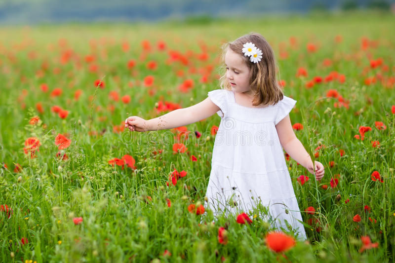 Little girl in poppy flower field. Adorable little girl in white dress playing in poppy flower field. Child picking red poppies. Toddler kid having fun in summer stock photography