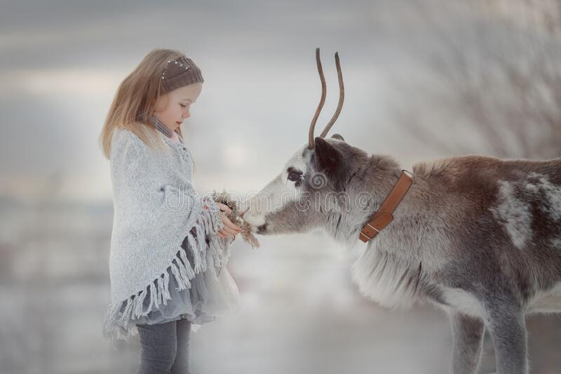 Little girl portrait with domestic deer in winter forest royalty free stock photo