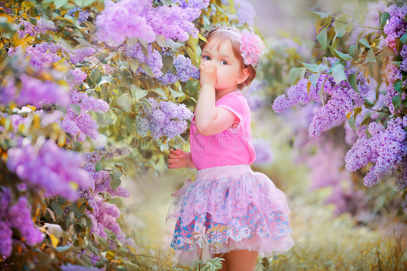 Little girl portrait in a lilac garden stock image