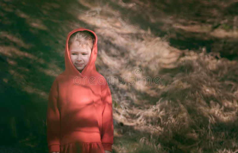 Little girl portrait. Portrait of little girl in red dress,selective focus royalty free stock images