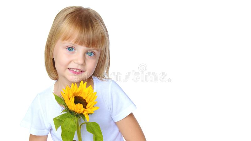 Little girl posing in the studio. Close-up. royalty free stock images