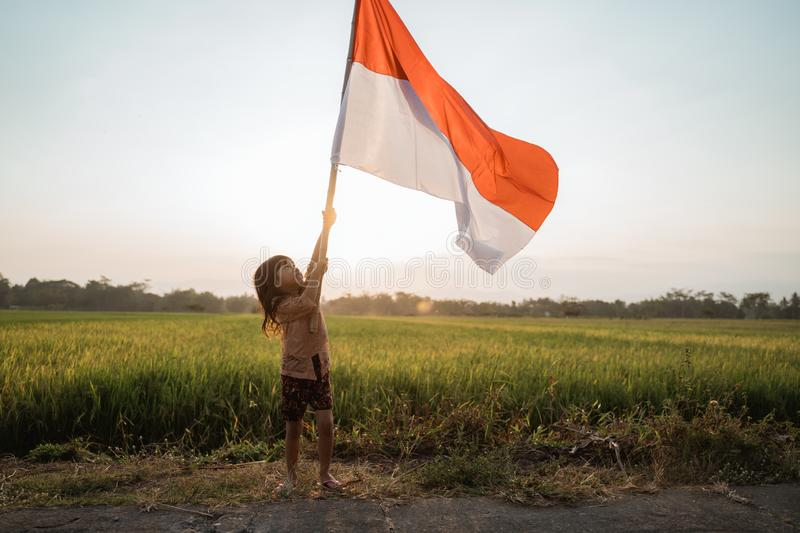 Little girl pride flapping Indonesian flag with happiness. In the rice field royalty free stock photography