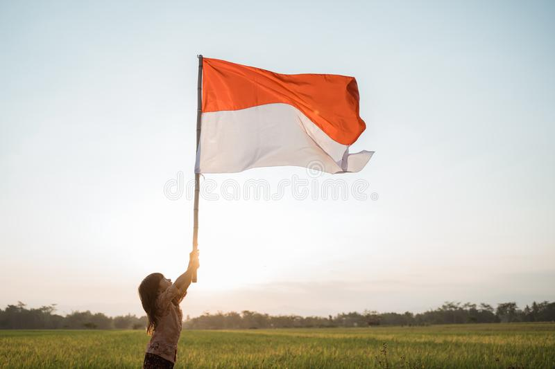 Little girl pride flapping Indonesian flag with happiness. In the rice field royalty free stock images