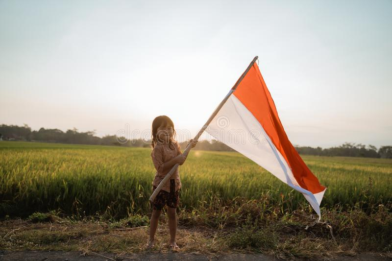 Little girl pride flapping Indonesian flag with happiness. In the rice field royalty free stock image