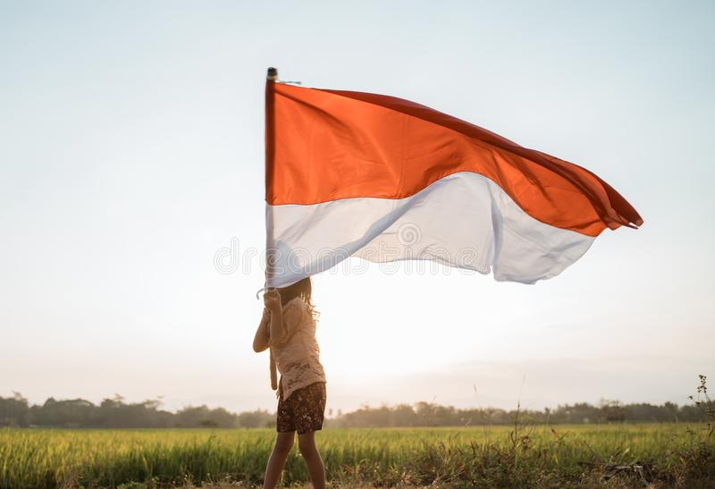 Little girl pride flapping Indonesian flag with happiness. In the rice field stock image