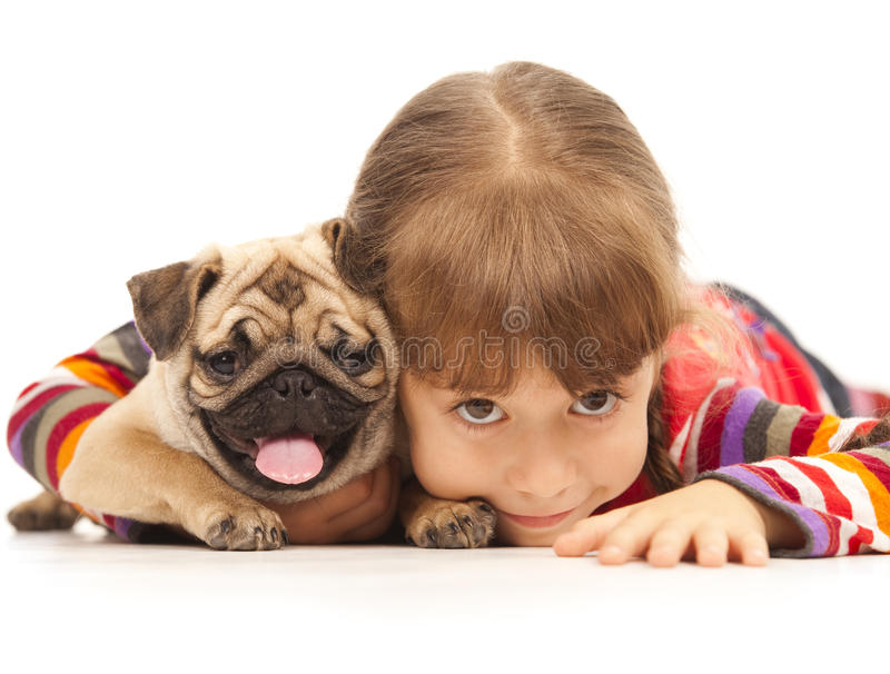 Little girl and the Pug-dog stock photo
