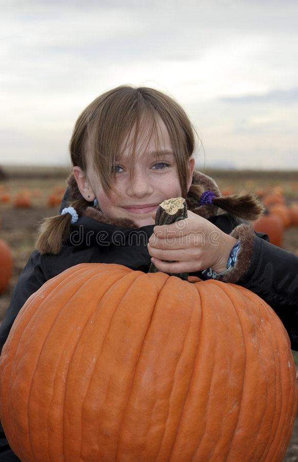 Little Girl in Pumpkin Patch stock images