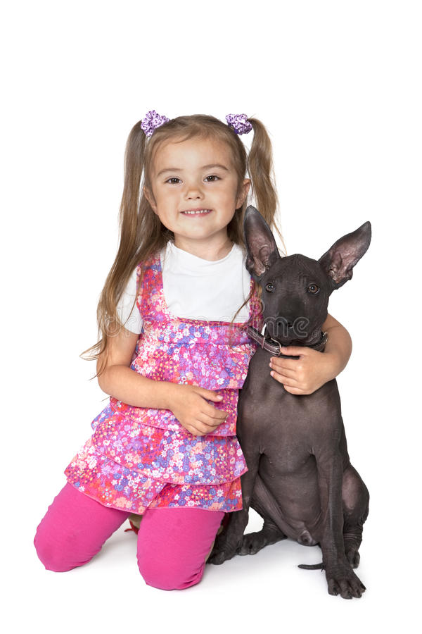 Little girl with a puppy. Little girl with a Mexican xoloitzcuintle puppy against white background royalty free stock image