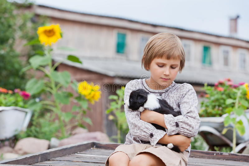 Little girl with the puppy. Border Collie stock images