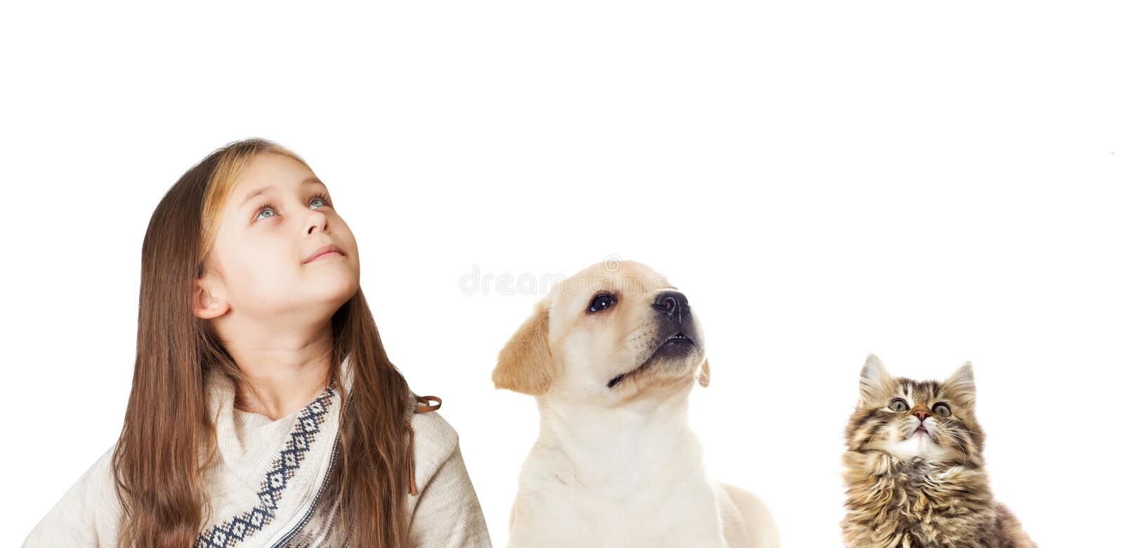 Little girl and puppy and kitten. Looking up isolated on white background stock photography