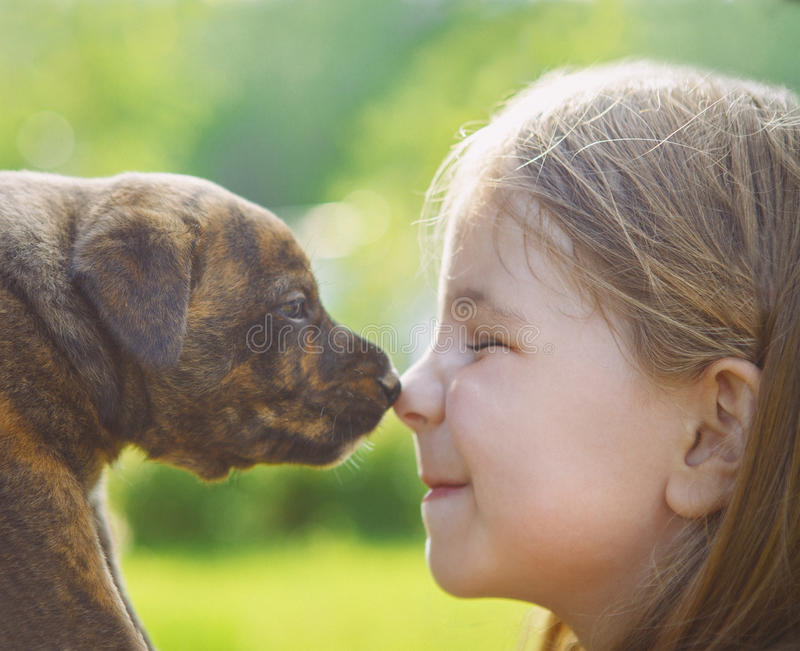 Little girl with a puppy. Nose to nose stock images
