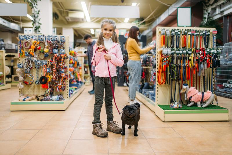 Little girl with puppy in pet shop, friendship. Kid with dog chooses accessories in petshop, caring for domestic animals stock photography