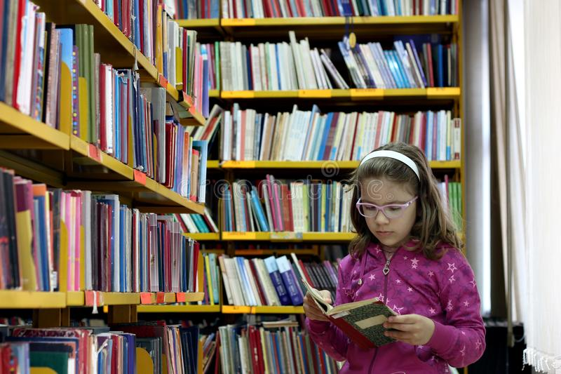 Little girl reading a book in the library stock image