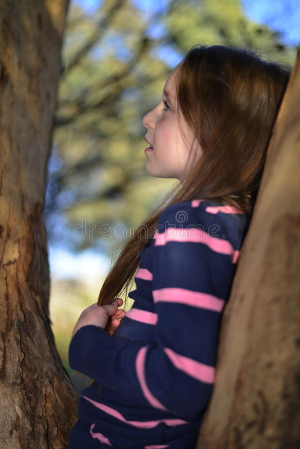 A a little girl resting on a tree branch stock photo