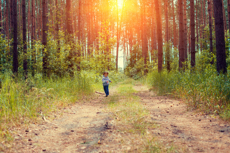 Little girl running in the forest stock photography