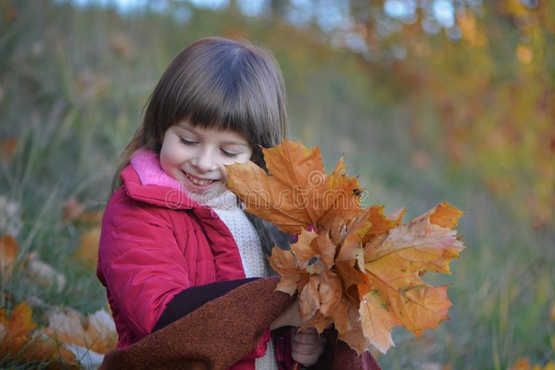 Little girl`s portrait with leaves stock images