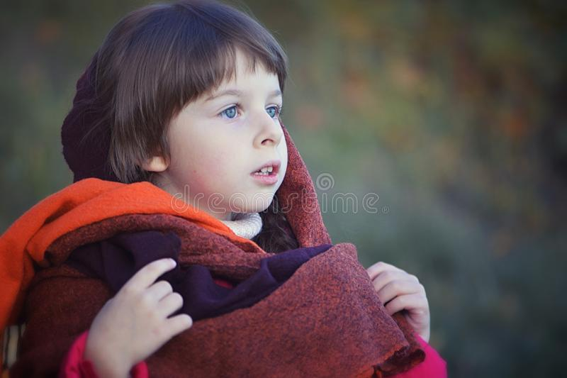 Little girl`s portrait in red shawl royalty free stock photo