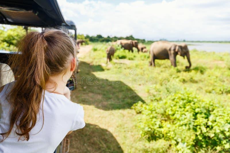 Little girl on safari stock photo