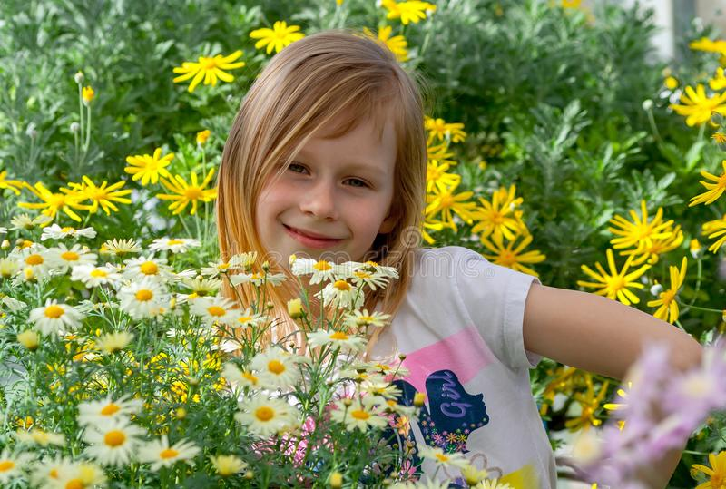 Little girl seven years old, surrounded by daisy flowers royalty free stock photography