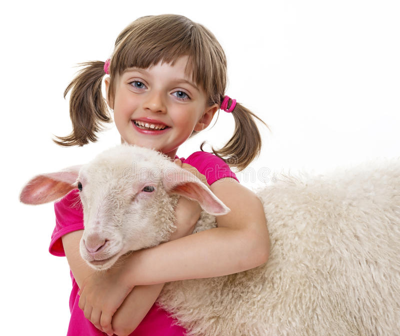 Little girl with sheep royalty free stock image