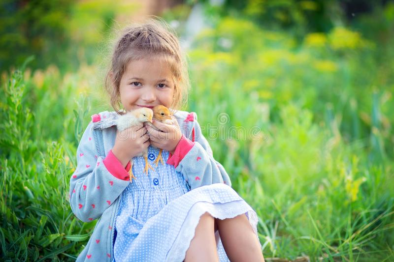 The little girl sits in a grass in the village and holds in hand of two chickens.  royalty free stock photos