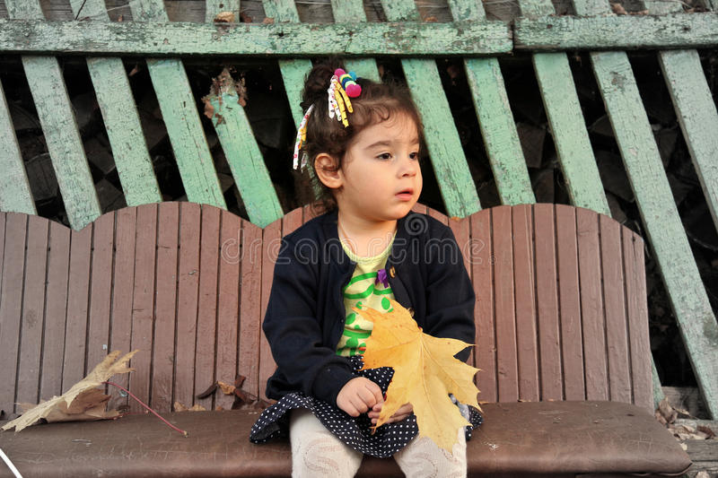 Little girl sitting on bench with bouquet of maple leaves royalty free stock image