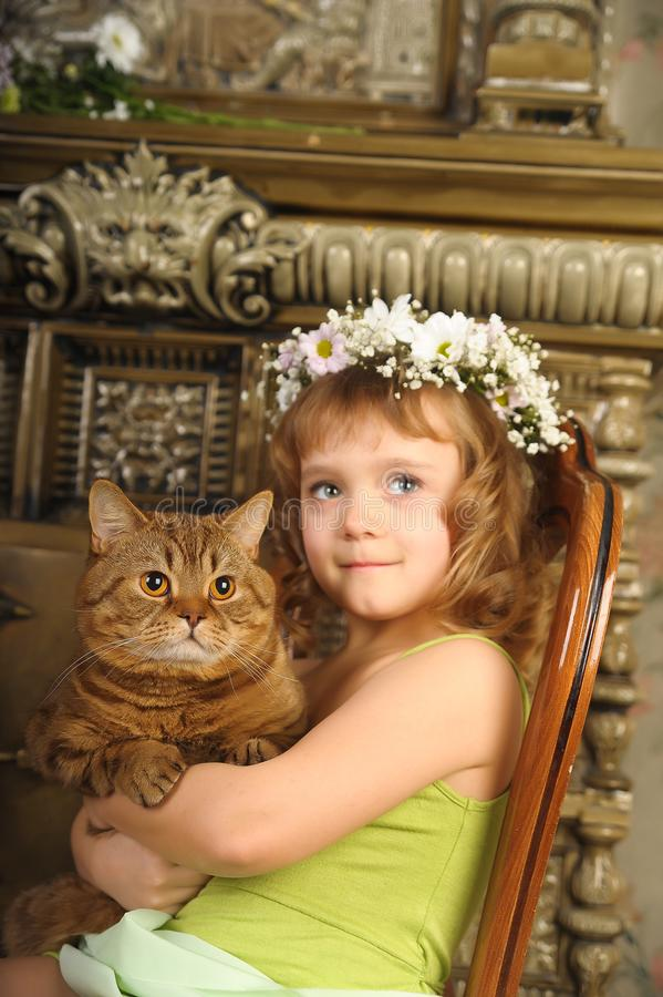 Little girl sitting with a wreath of flowers on her head with a big fat cat royalty free stock photos