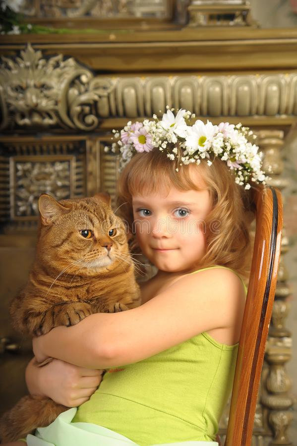 Little girl sitting with a wreath of flowers on her head with a big fat cat royalty free stock images