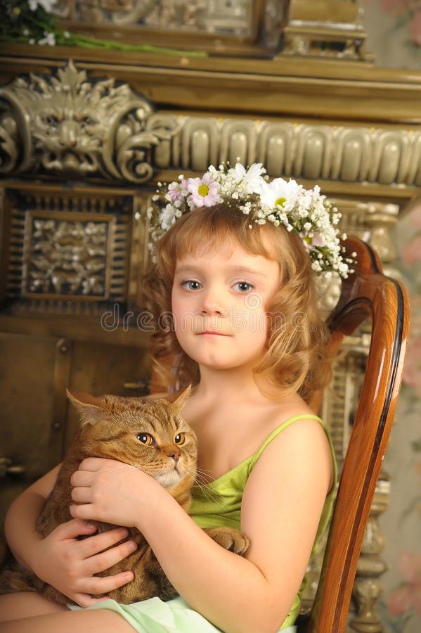 Little girl sitting with a wreath of flowers on her head with a big fat cat royalty free stock photo