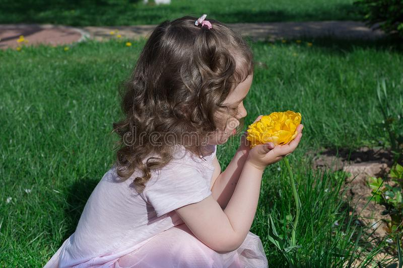 Little girl smell bright yellow flower at spring time royalty free stock photo