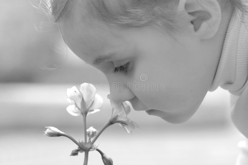Download Little girl smell flower stock image. Image of beautiful - 3039253