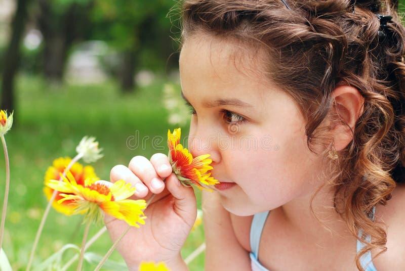 Little girl smelling flower stock images