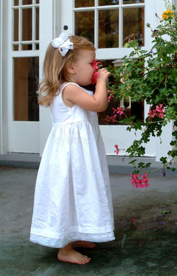 Little Girl Smelling Flower. Happy little girl smelling flower in back yard garden stock photography