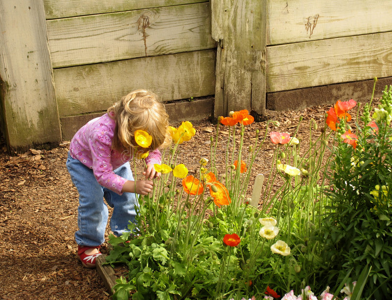 Download Little Girl Smelling Flowers Stock Image - Image: 783721