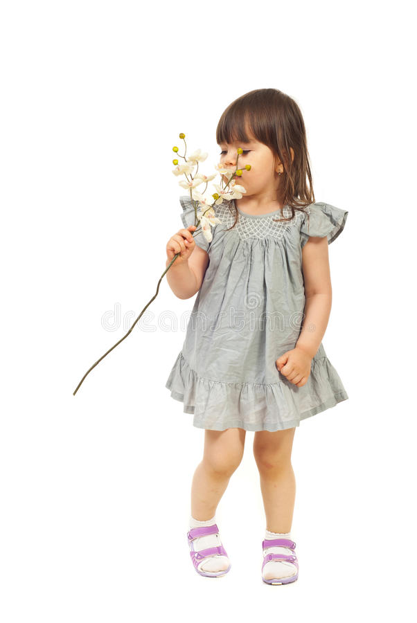 Little girl smelling orchid stock photo