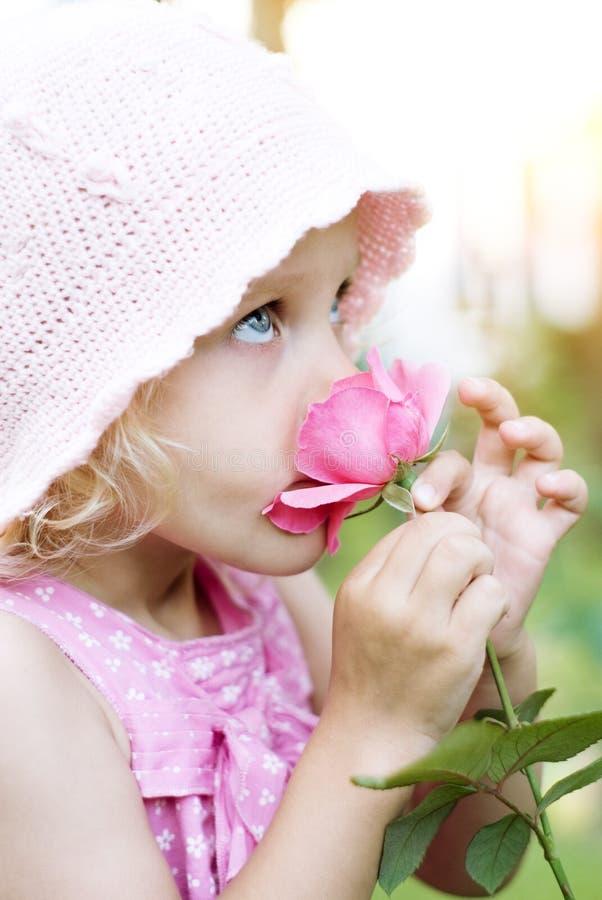 Little girl smelling pink rose stock images