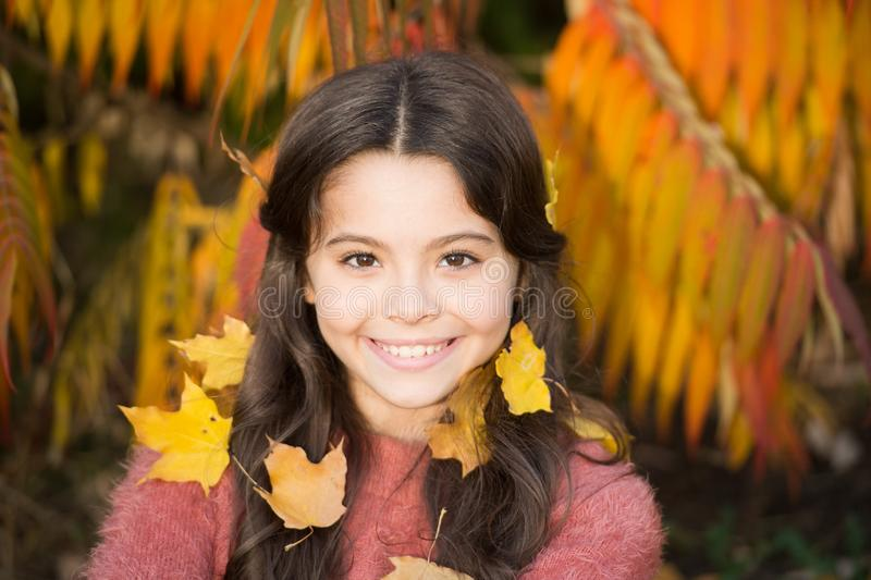 Little girl smiling happy cute child gorgeous long hair maple leaves. Cozy autumn day. Play with leaves. Happy childhood royalty free stock photos