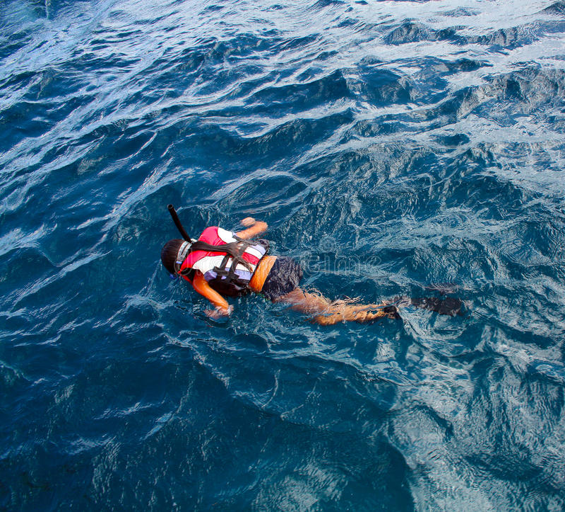 Little girl snorkeling in ocean stock photo