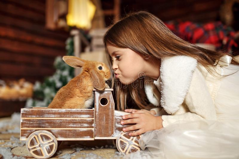 Little girl stretch to kiss a rabbit sitting in a toy car. Christmas decoration. Holiday concept.  royalty free stock images