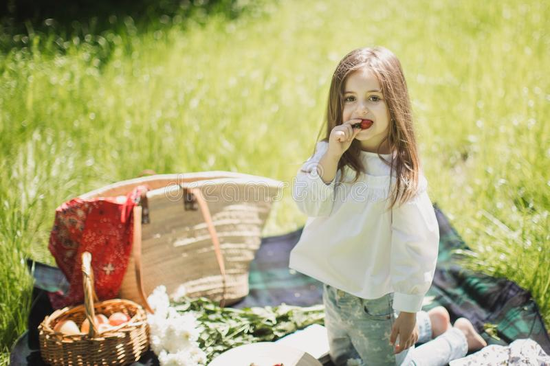Little girl on a summer picnic in nature with berries royalty free stock photos