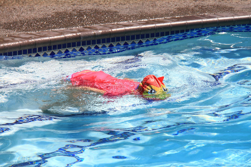 Little girl swimming in pool stock images
