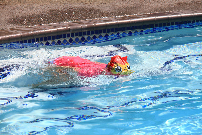 Little girl swimming in pool royalty free stock photography
