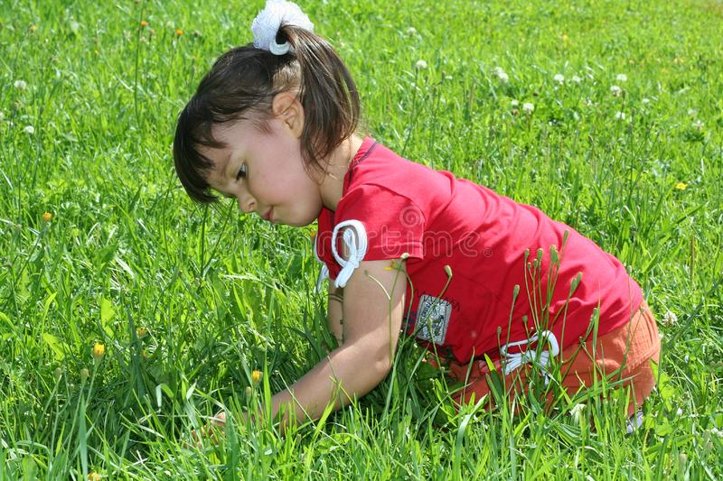 Download Little girl tear flower stock image. Image of facial, jumping - 6928337