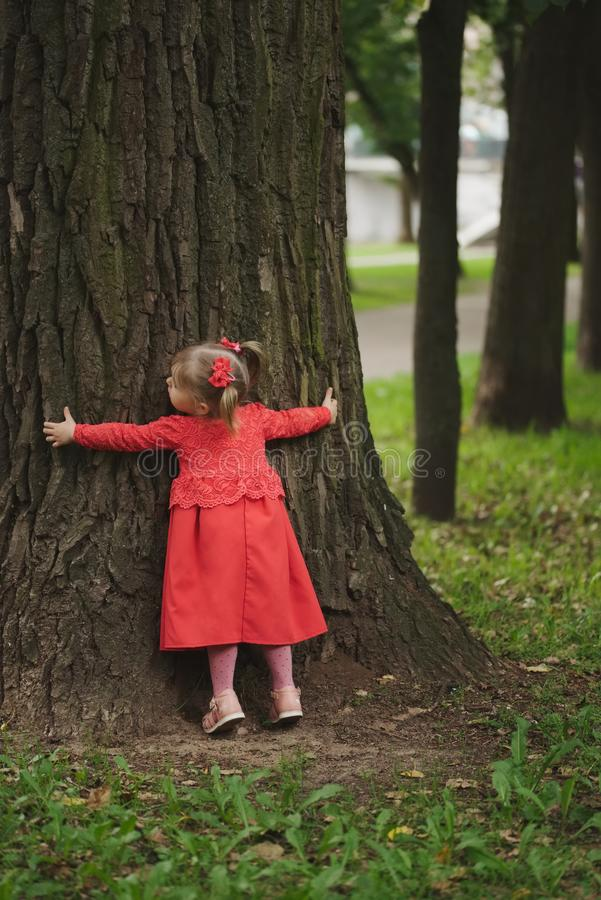 Little girl with tree in summer park. Little funny girl with tree in summer park stock photography
